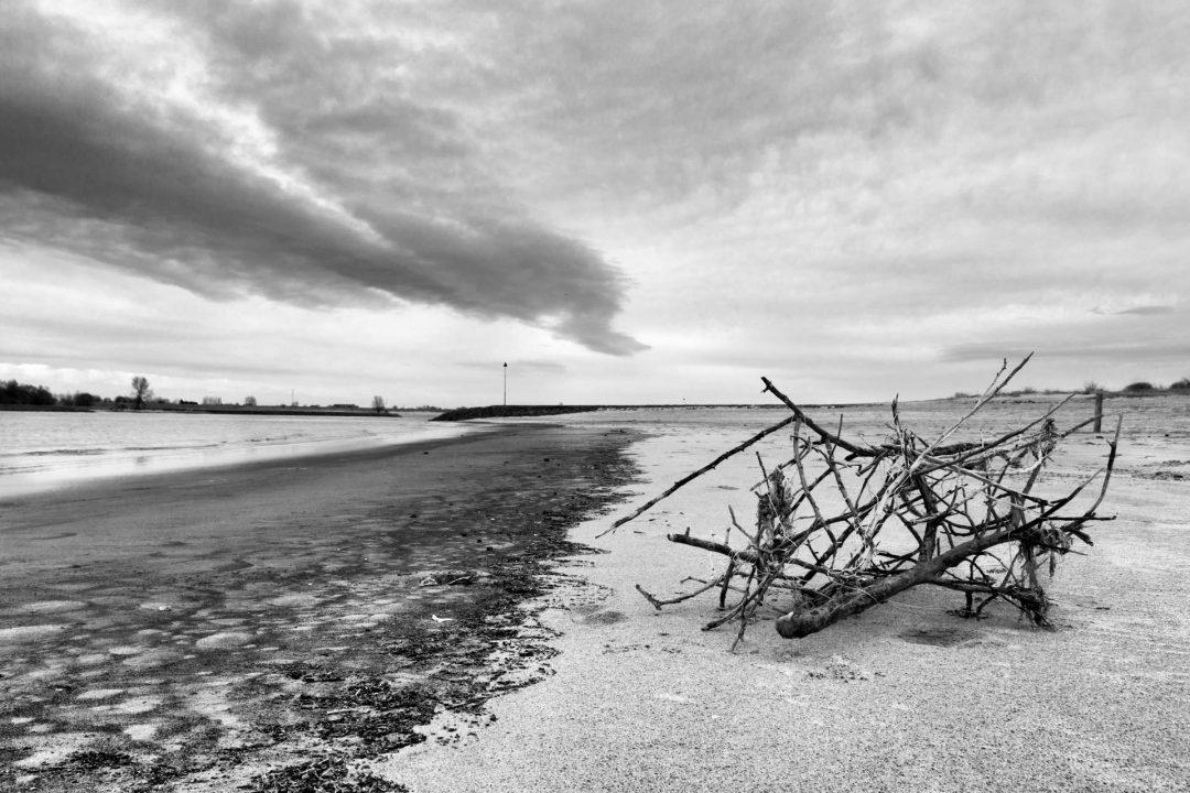 natuurfoto, landschap, zwart-wit, Ooijpolder, fotograaf, Nijmegen, Waal