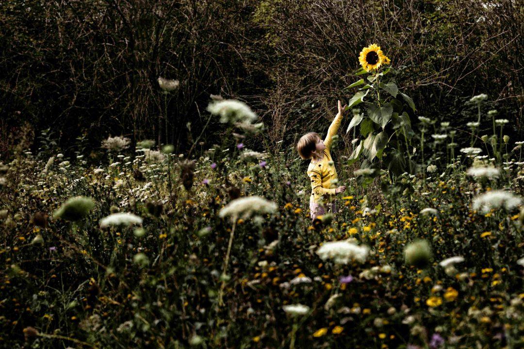 bloemenzee, foto van kind bij zonnebloem, fotograaf